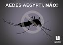Colégio Metodista Bennett entra na luta contra o mosquito Aedes aegypti